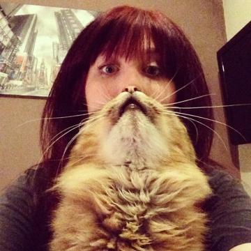 20130523-cat-beards-6