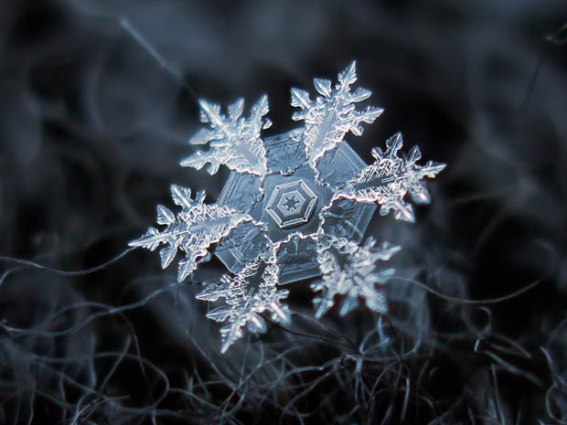 snowflake-4b