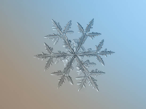 snowflake-9b