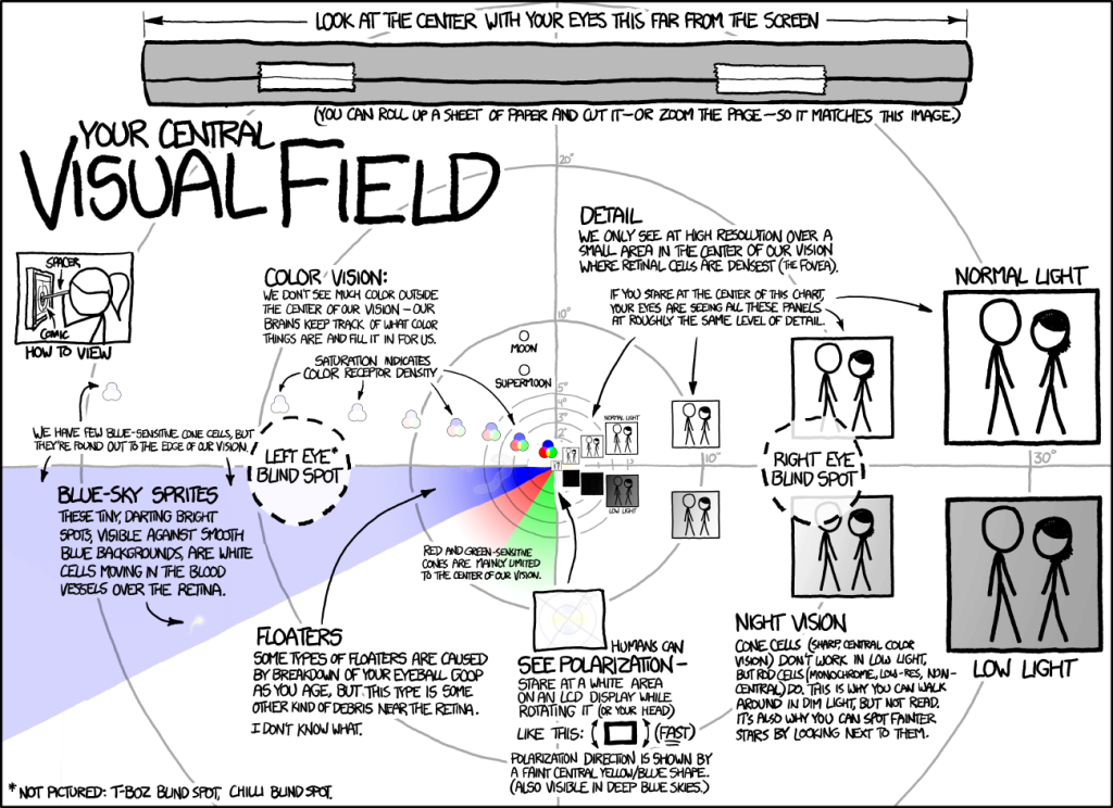 visual_field_large