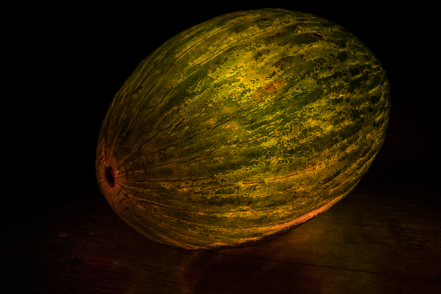 Christmas-Melon