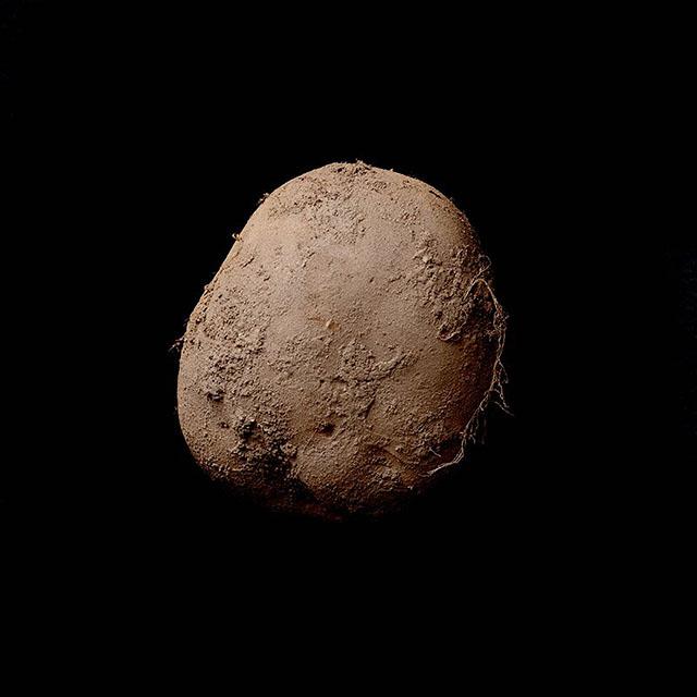 Potato-#345-(2010)