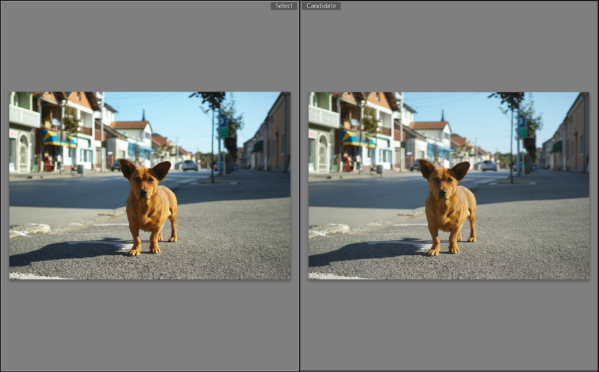 Sigma-Photo-Pro-6.3-vs-6.3.2-1