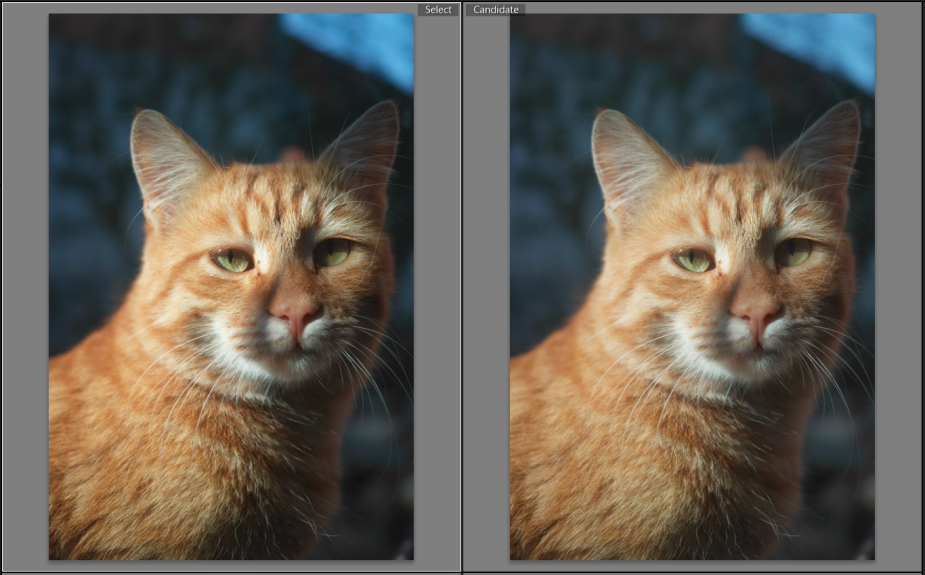 Sigma-Photo-Pro-6.3-vs-6.3.2-6