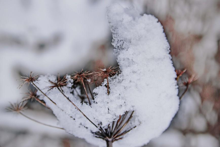 verschneite_berge_fotospaziergang-4-min